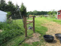 Put Up Fencing